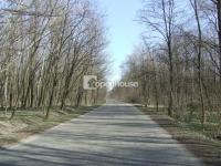 Pusztavacs és Hernád között eladó 83079m2 8 és fél hektár mezõgazdasági terület ingatlan hirdetéshez feltöltött kép